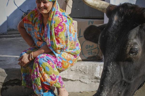 Indien2011-57